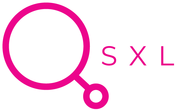 QSXL - Consultant Search & Recruitment Projects Image