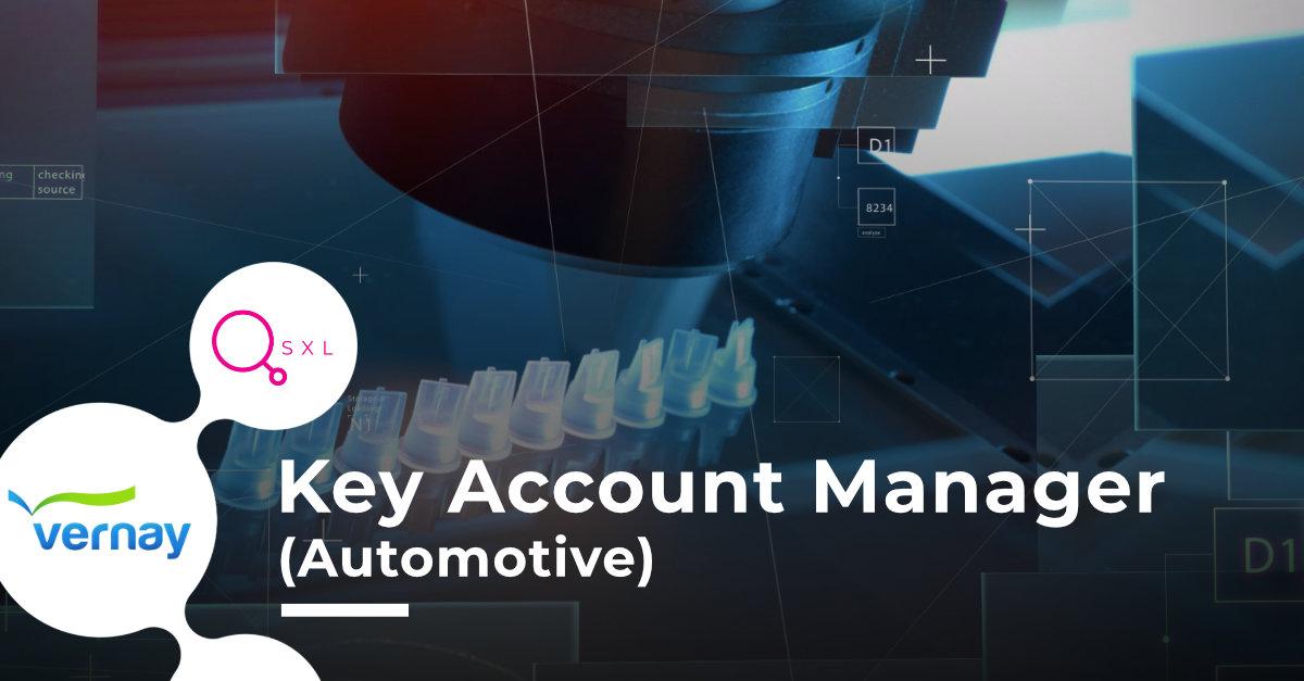Vernay - Key Account Manager (Automotive) Image