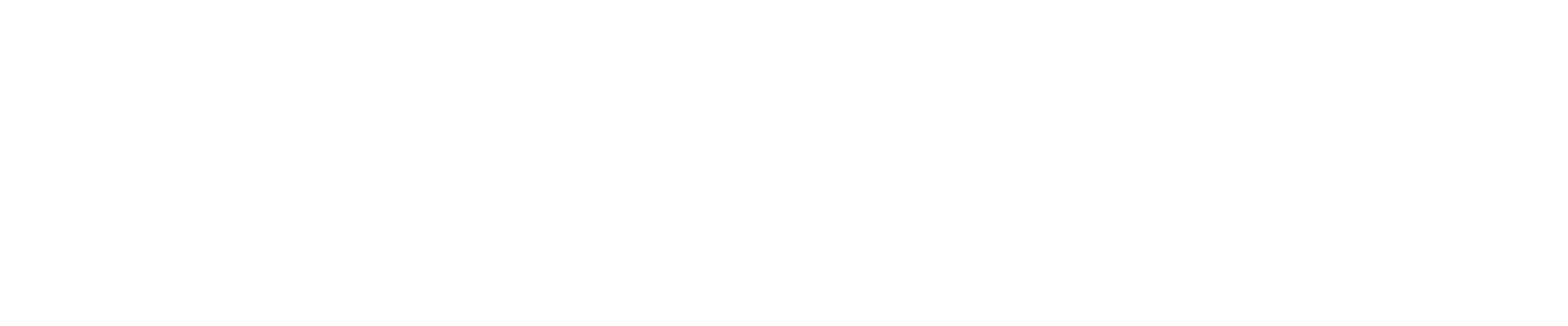 Job Page Logo White